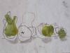 Helen Pakeman 'Fruity-line-up'
