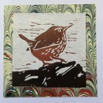 Jenny Wren Card